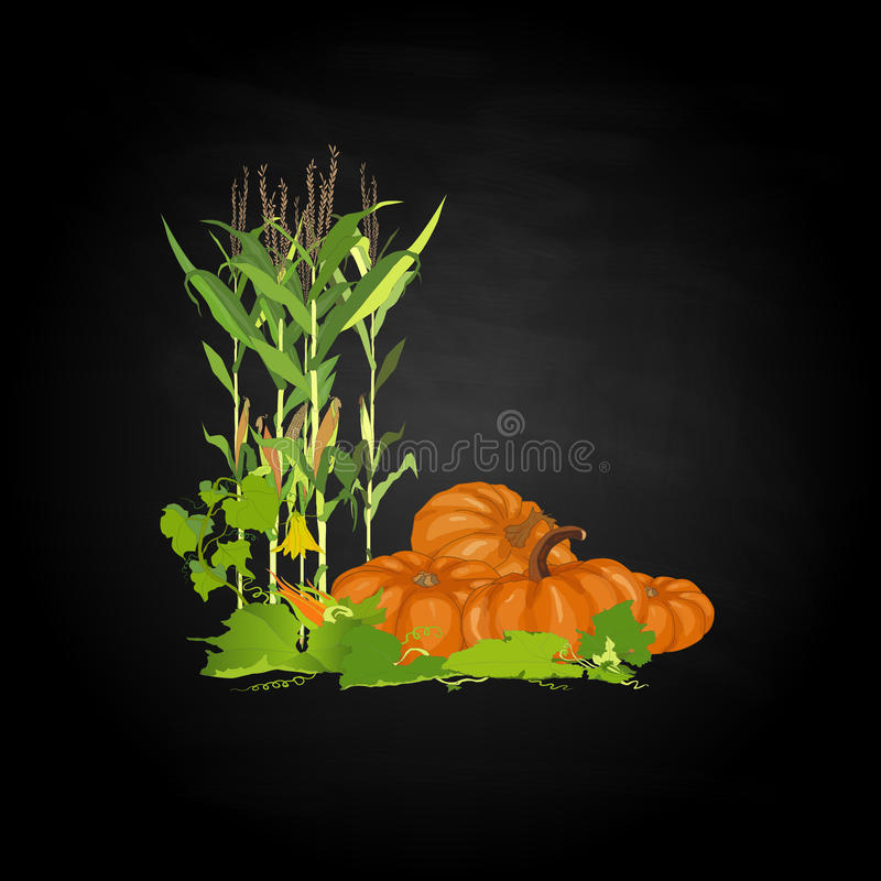 Download Seasonal Background With Pumpkins And Corn Stock Vector - Image: 83713656