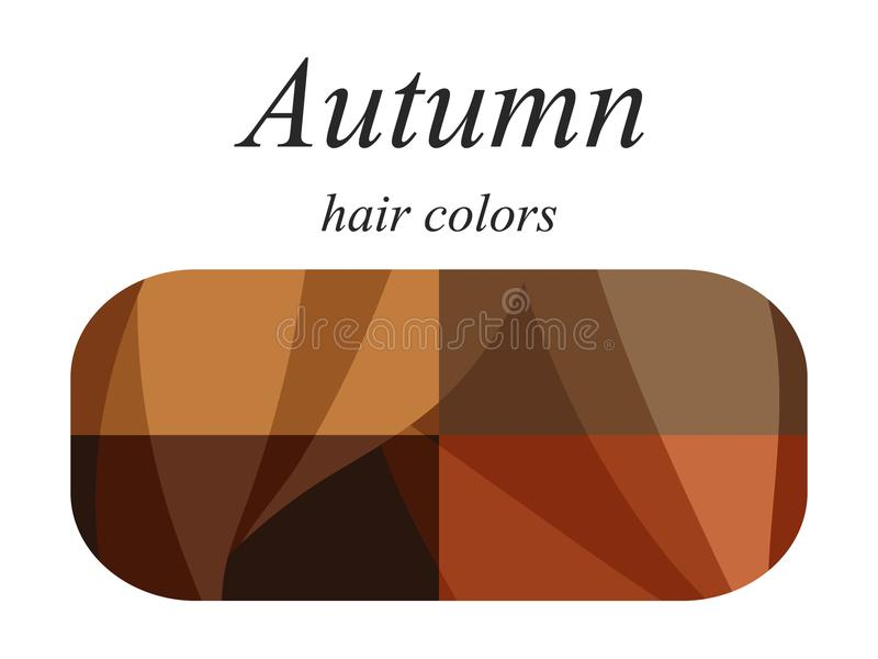 Seasonal color analysis palette for autumn type of female appearance. Hair colors for autumn type. Stock vector seasonal color analysis palette for autumn type stock illustration