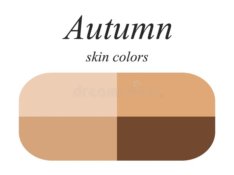 Seasonal color analysis palette for autumn type of female appearance. Skin colors for autumn type. Stock vector seasonal color analysis palette for autumn type stock illustration