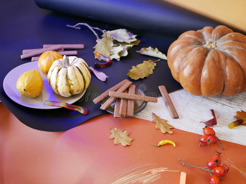 Seasonal decorative still life of pumpkins, autumn leaves, chocolate cookies, Halloween decor on a black and orange background royalty free stock images