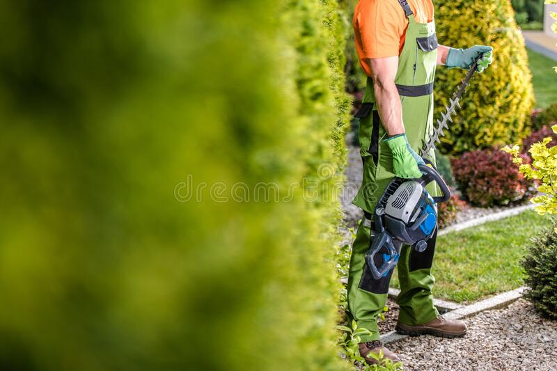 Seasonal Garden Trimming royalty free stock photography