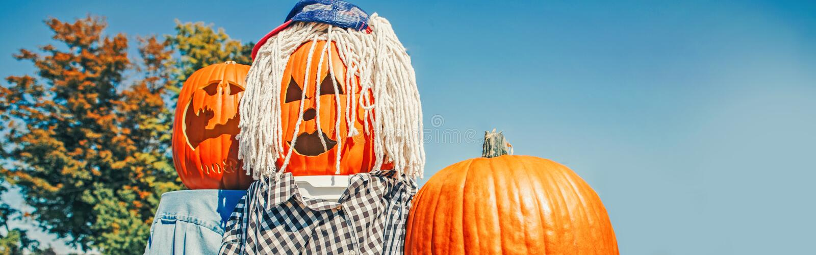 Seasonal Halloween holiday autumn fall scary decoration. Carved horrible faces from fresh harvest pumpkin royalty free stock photos
