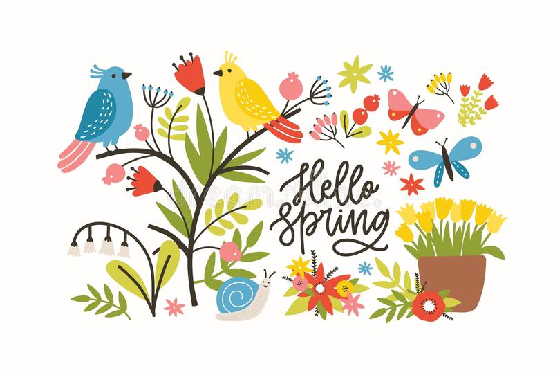 Seasonal horizontal banner template with Hello Spring phrase, blooming meadow flowers, cute pretty funny birds and vector illustration