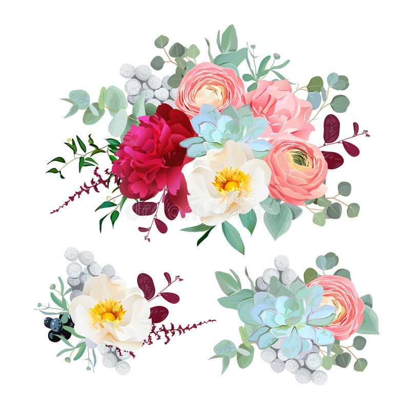 Seasonal mixed bouquets of peony, ranunculus, succulents, wild rose, carnation, brunia, blackberries and eucaliptus leaves vector. Design set. All elements are royalty free illustration