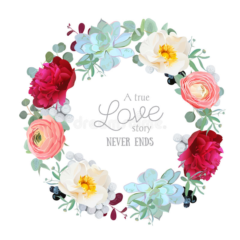 Seasonal mixed round frame with peony, ranunculus, succulents, wild rose, brunia, blackberries and eucalyptus leaves. Vector design set. All elements are stock illustration