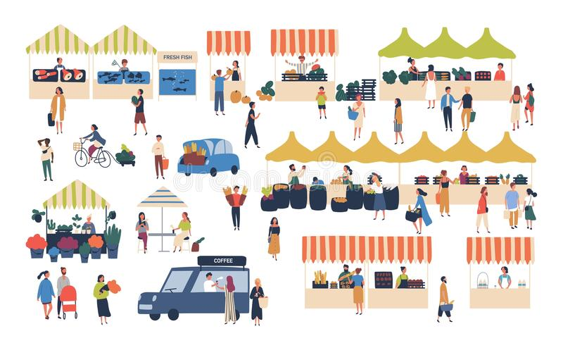 Seasonal outdoor street market. People walking between counters, buying vegetables, fruits, meat and other farmer vector illustration