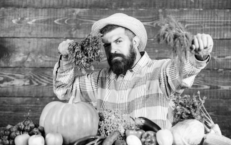 Seasonal vitamin food. Useful fruit and vegetable. bearded mature farmer. organic and natural food. happy halloween. man. Chef with rich autumn crop. harvest stock image
