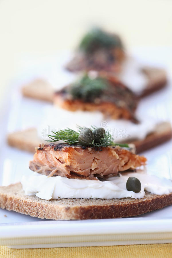 Free Seasoned Smoked Salmon Royalty Free Stock Photo - 12534365