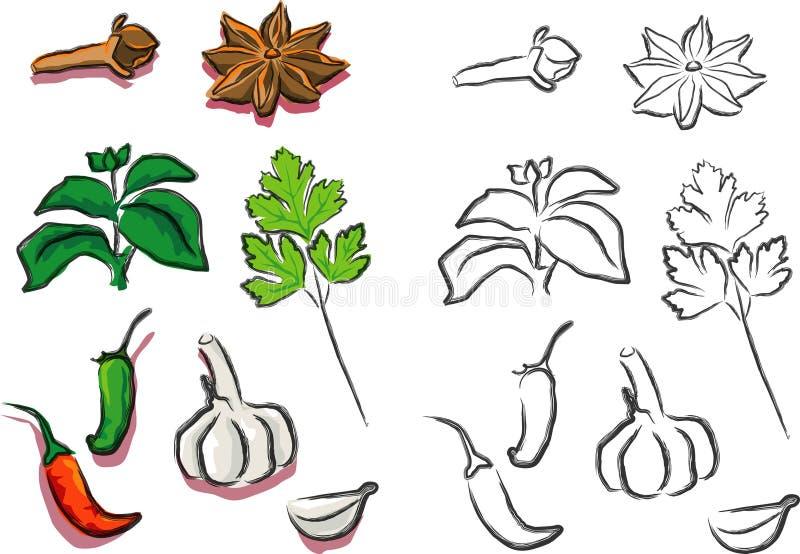 Seasoning. A vector illustration for a variety of seasoning for food royalty free illustration