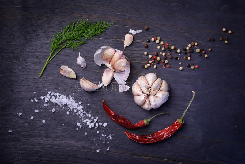 Seasoning ingredients: spices, pepper mix, chili pepper, garlic, dill, salt. Top view on rustic wooden table. stock images