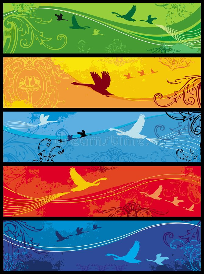 Seasons birds banners royalty free stock photos