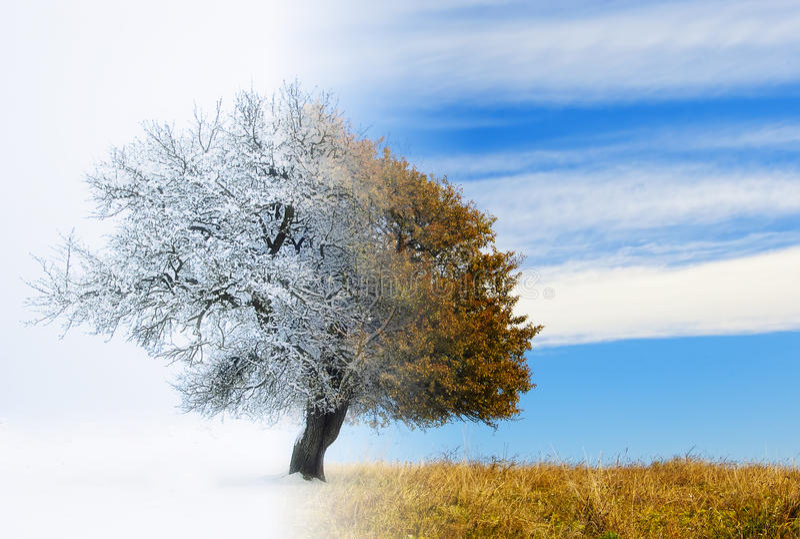 Seasons change stock illustration