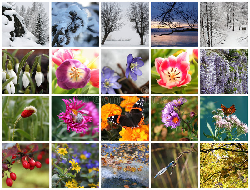 Seasons collage. Close up of 20 subject of seasons over white background royalty free stock photography