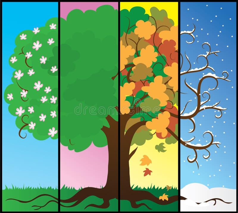 Seasons tree vector illustration