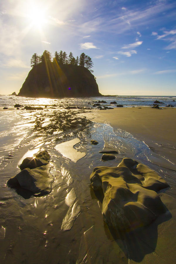 Download Seastack Sanctuary At Low Tide Second Beach Olympic National Park Stock Photo - Image: 29982464