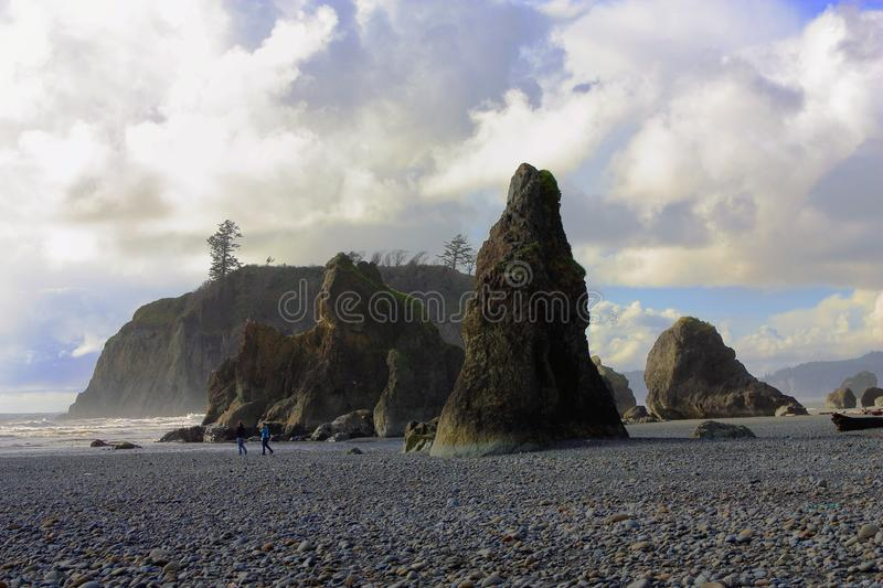 Seastacks na praia do ` s do rubi, parque nacional olímpico, Washington fotos de stock royalty free