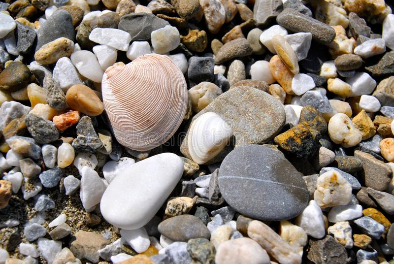 Seastones fotografie stock libere da diritti