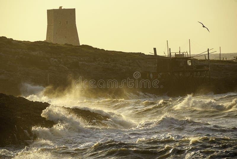 Seastorm stock foto's