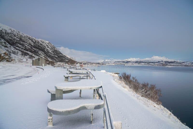 Seat bij oever van het meer met sneeuw in de winter in Lofoten-Eilanden in Noorwegen wordt behandeld dat stock afbeeldingen