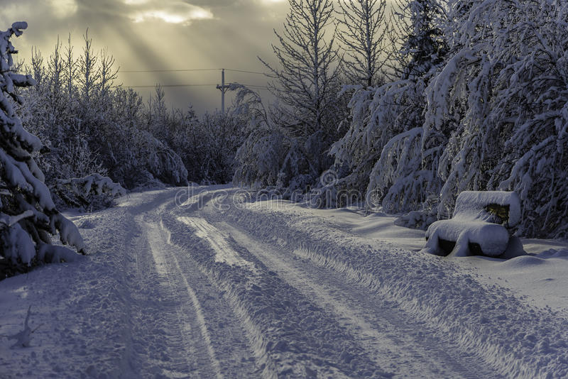 Seat in the snow    _ISM5012. Cave Forest winter after winter storm royalty free stock photography