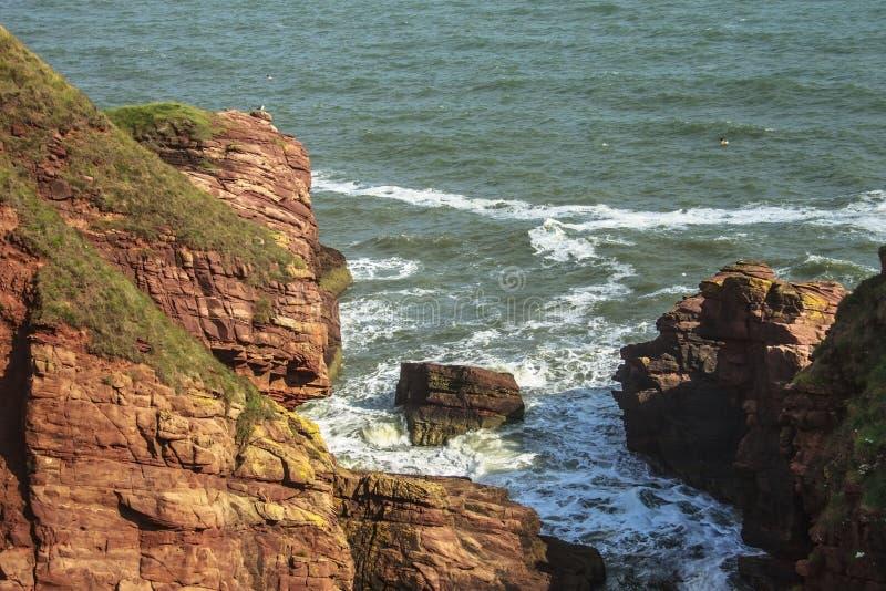 Seaton Cliffs Arbroath em Angus scotland imagem de stock