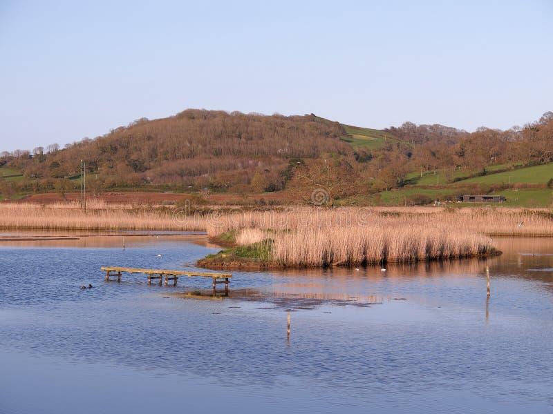 Seaton Wetlands nel Devon immagini stock libere da diritti