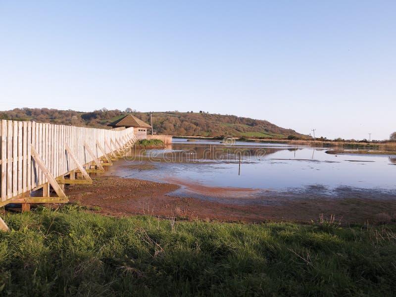 Seaton Wetlands nel Devon fotografia stock libera da diritti