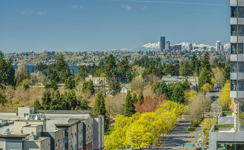 Seattle, Washington and Olympic Mountains from Bellevue in the Spring. Early Spring Blooms on the Streets of Bellevue, Washington with the Seattle Skyline and stock photo