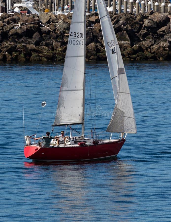 Seattle Harbor Sailing stock photo