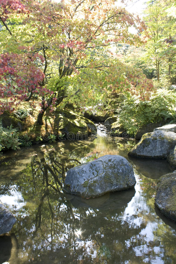 Download Seattle Japanese garden stock photo. Image of trees, culture - 29634170