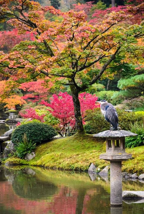 Free Seattle Japanese Garden Stock Photo - 65040320
