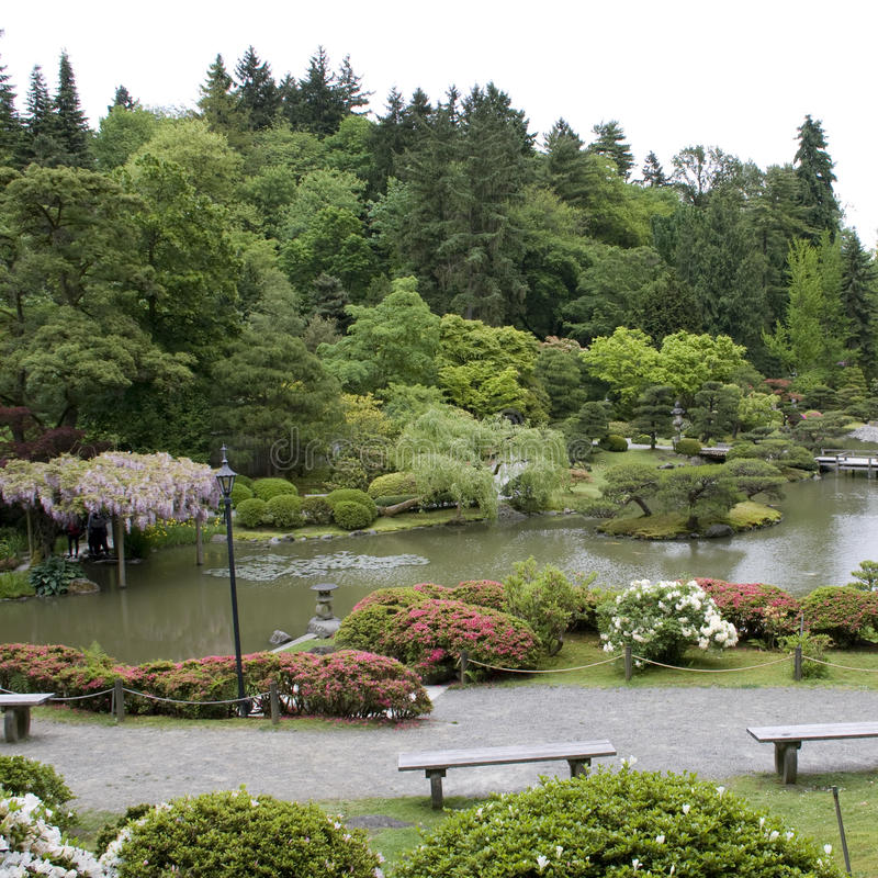 Seattle Japanese Garden stock photos