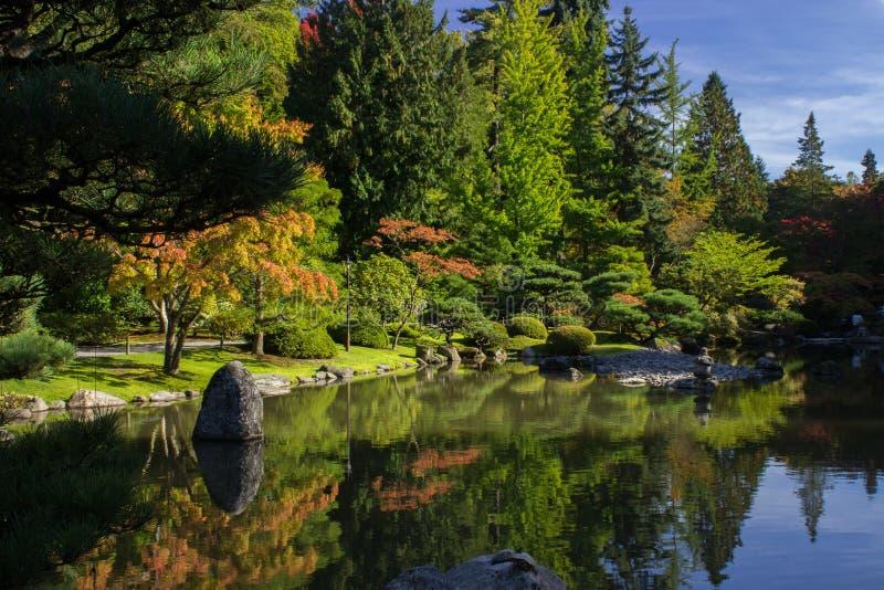 Seattle japansk Garden/Zen Lake arkivbilder