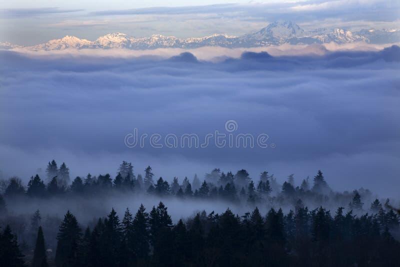Seattle onder de Mist stock afbeeldingen