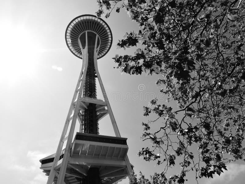 Seattle-Raum-Nadel lizenzfreies stockbild