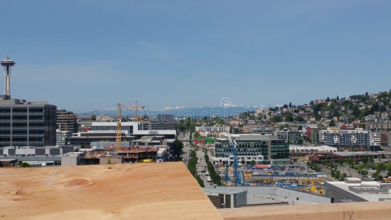 Seattle tillväxt royaltyfri fotografi