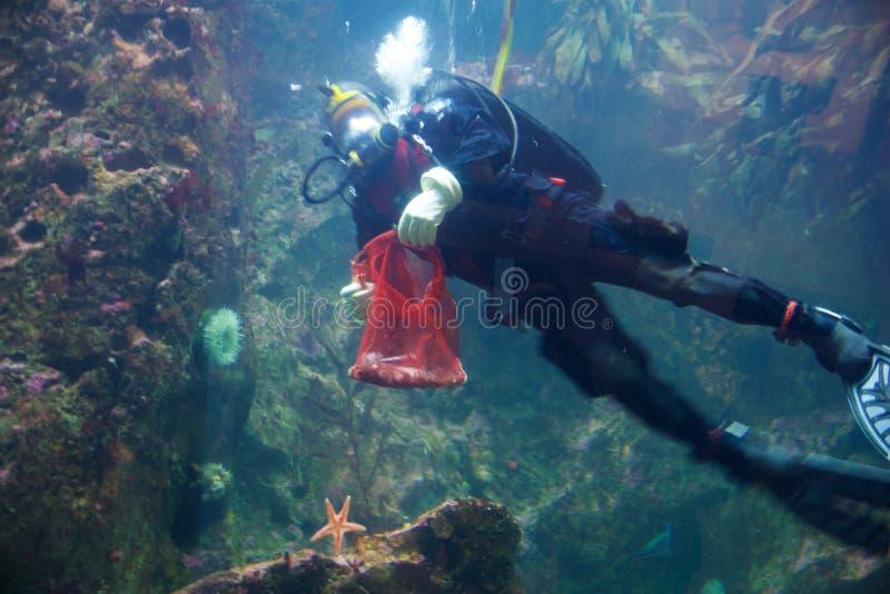 SEATTLE, WASHINGTON, Etats-Unis - 23 janvier 2017 : Plongeur autonome nageant à la grande fenêtre de visionnement sous-marine à S photographie stock libre de droits