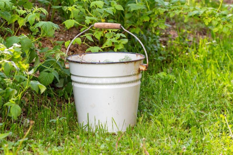 Seau émaux blanc sarclage et nettoyage des mauvaises herbes dans le jardin photographie stock