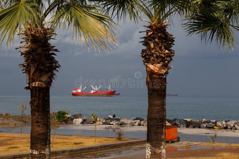 Seaview con el buque y las palmas de carga foto de archivo