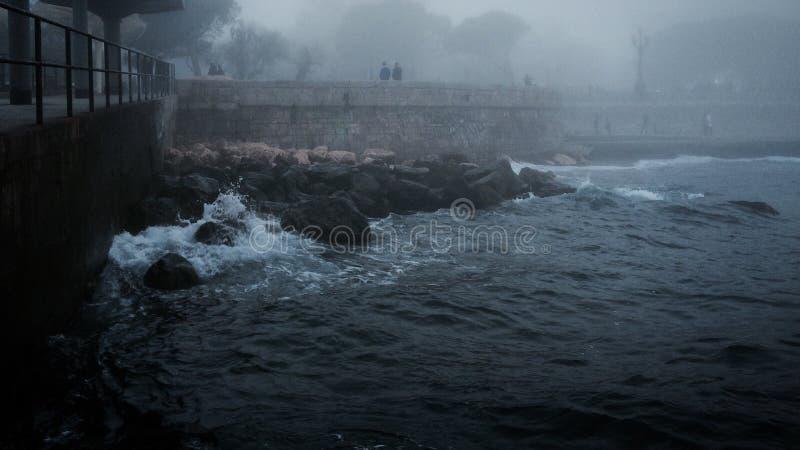 Seaview dans la marina en brouillard d'hiver photographie stock libre de droits