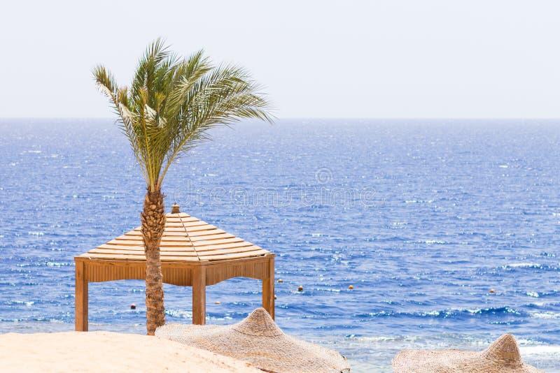 Seaview del hotel turístico tropical fotos de archivo