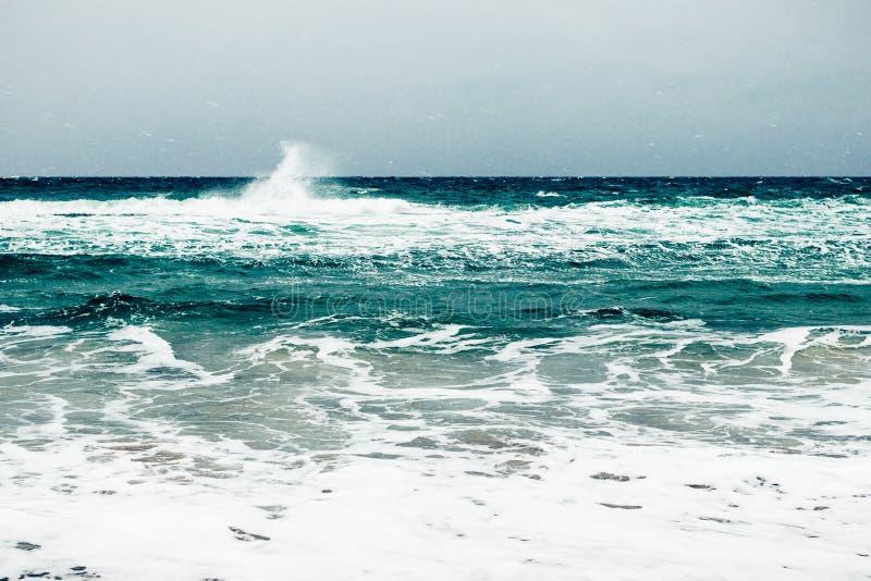 Seaview durante precipitazioni nevose e vento immagine stock libera da diritti