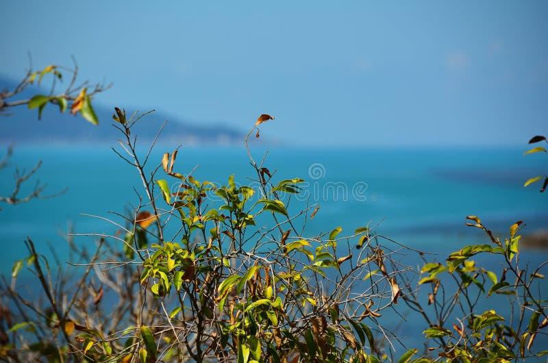 Seaview en la playa del estante de la explosión, isla de Samui fotos de archivo