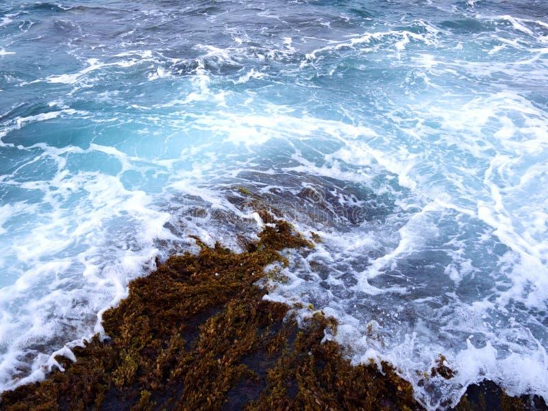 Seawater blown ashore stock image
