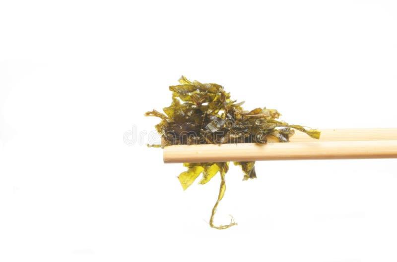 Seaweed in chopsticks stock photos