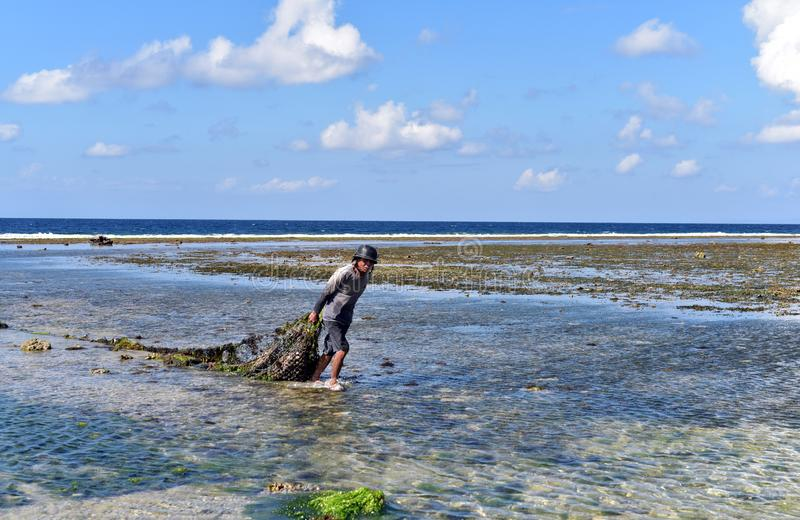 Seaweed farms in Nusa Penida Isaland. Indonesan farmers working at the seaweed farms at the north side of Nusa Penida Island, Indonesia stock photos