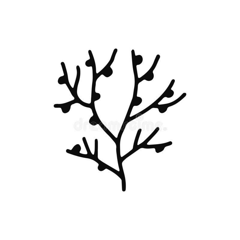 Seaweed icon. sketch isolated object black.  vector illustration