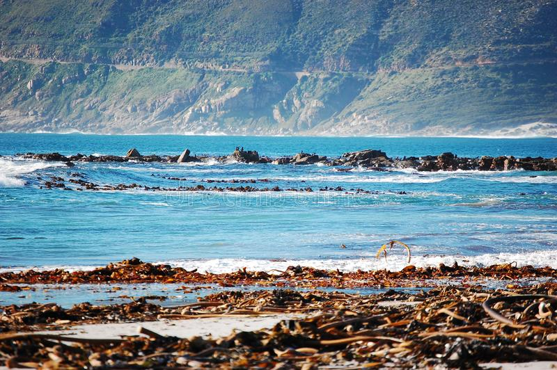 Seaweed rocks mountains in Cape Town South Africa. Holiday, travel, destination, vacation, rest, nature, natural, scenic, landscape, water, blue, summer, hills stock photography