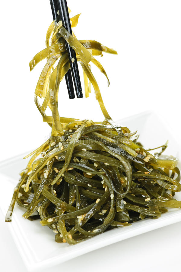 Free Seaweed Salad Stock Images - 16126344
