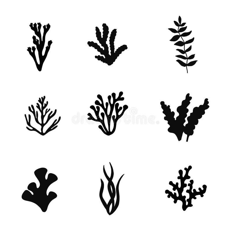 Seaweed sea black silhouette. vector set isolated. Seaweed sea black silhouette. vector set stock illustration